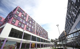 Thành Đô thông báo: Chỉ 50% căn hộ condotel cocobay được phép chuyển thành chung cư, ai nhanh tay thì được...sẵn sàng dành cả khu Naman để tri ân khách hàng có thiện chí