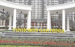 Vingroup sắp sở hữu 100% công ty phát triển các dự án Vinhomes Riverside, Vinhomes Gardenia, Vinhomes Skylakes