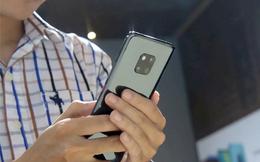 Thị phần Huawei xuống thấp nhất từ trước đến nay, tham vọng số 2 tại Việt Nam khó thành