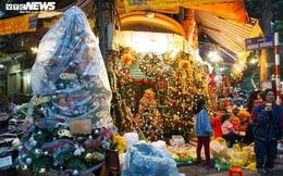 Đại gia Việt 'bạo tay' chi hàng chục triệu mua cây thông 'khủng' đón Noel