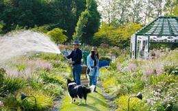 Cặp vợ chồng trẻ dành 5 năm để biến khu đất hoang rộng 6000m² thành khu vườn thiên đường của cỏ cây, hoa lá