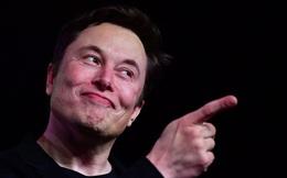 """""""Bộ luật cái mông"""" và cách Elon Musk đã bị chính nhân viên của mình """"troll"""" không thương tiếc"""