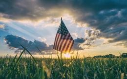 Nông dân Mỹ đang đối mặt với một cuộc hủy diệt toàn diện