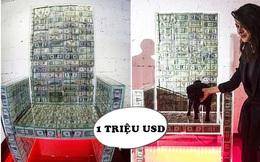 Chiếc ghế làm từ 1 triệu USD tiền mặt của tỷ phú Nga: Có 'siêu năng lực' biến người ngồi vào trở nên giàu có, truyền năng lượng gấp 10 lần bình thường?