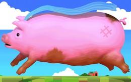 X-Pig - Loài cứu thế cho cơn khát lợn điên cuồng ở Trung Quốc