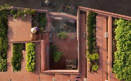Vườn rau 7 bậc thang xanh tươi trên mái nhà của vợ chồng trung niên được các con xây tặng ở Quảng Ngãi