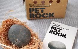 """Phụ huynh đau đầu việc nuôi thú cưng của con trẻ? Đã có """"thú cưng đá"""" Pet Rock, không cần đồ ăn, khỏi lo dọn phân: Case study bán hàng kinh điển nhất của thế kỷ 20"""