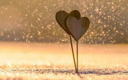 Hỡi những cặp đôi đang yêu nhau, các bạn có được bao nhiều điều trong số những minh chứng về tình yêu đích thực dưới đây?