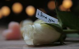 Valentine Trắng: Khi tình yêu bị biến tướng thành sự ganh đua