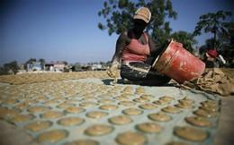"""Bánh làm từ bùn, loại đồ ăn """"dưới đáy"""" xã hội cứu sống hàng trăm nghìn người dân Haiti"""