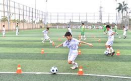 Sau khi rút lui khỏi bóng đá Thanh Hóa, FLC thành lập câu lạc bộ đào tạo trẻ tại Thái Bình