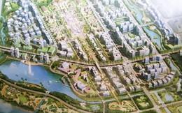 """Thanh tra Chính phủ """"sờ gáy"""" dự án khu đô thị gần 10.000 tỷ ở Hải Phòng"""