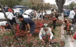 """Lãnh đạo cty cây xanh đề nghị trích xuất camera tìm những người đánh ô tô """"hôi hoa"""" ở đường Kim Mã"""