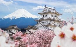 Những cơ hội kinh doanh khổng lồ từ vẻ đẹp hoa anh đào Nhật Bản