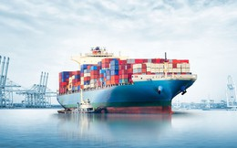 Xuất khẩu tại Hoa Kỳ: Bí quyết vi diệu giúp các doanh nghiệp Việt Nam vượt qua hàng rào phòng vệ thương mại trùng trùng điệp điệp