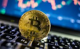 Giá Bitcoin đang rơi