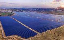 Ai đang dẫn đầu trong mảng năng lượng tái tạo ở Việt Nam? (P.2)