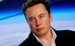 Tesla đang đối mặt với khủng hoảng nghiêm trọng nhất trong trong 5 năm gần đây