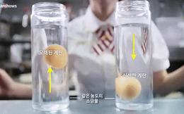 Chỉ mất 2 giây, bạn có thể phân biệt trứng tươi hay trứng cũ cực dễ dàng
