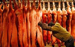 Chuyện lạ: Ăn chay đang là xu thế nhưng cơn khát thịt của loài người vẫn ngày một tăng