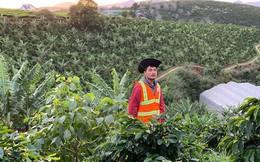 """""""Cánh én"""" The Coffee House và nỗ lực """"làm nên mùa xuân"""" thay đổi định kiến cà phê Việt là sản phẩm chất lượng thấp, giá rẻ"""