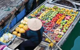 Du lịch Việt Nam quảng bá trênTikTok