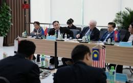 Ngành mía đường Đông Nam Á: Vật vã tìm lối thoát
