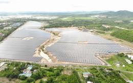 Ngành điện mặt trời của Điện Gia Lai chiếm 12% thị phần cả nước