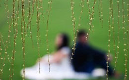 Ly hôn vẫn sống chung nhà: Tình trạng dở khóc dở cười của 4,3 triệu cặp đôi Trung Quốc