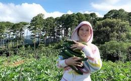 """Đến người giàu như Lý Nhã Kỳ cũng chọn về quê trồng rau nuôi gà: Nữ diễn viên vô cùng hồ hởi trong những trang phục """"quê mùa"""", dép tổ ong"""