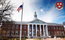"""Chuyện học, chuyện ngủ của sinh viên Harvard: Thư viện là nhà, cũng """"cú đêm"""" và stress như ai"""