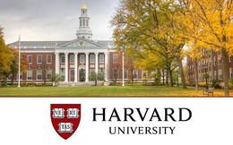"""'Vỡ mộng' Harvard: Bệnh thành tích, nạn """"cha truyền con nối"""", phân biệt giới tính, sinh viên không hẹn hò vì thiếu kỹ năng"""