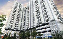 JLL: Nguồn cung căn hộ Tp.HCM tiếp tục hạn chế khiến giá bán tăng mạnh