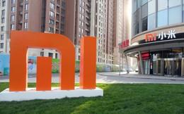 Xiaomi hào phóng tặng mỗi nhân viên 1.000 cổ phiếu sau khi lọt vào danh sách Fortune 500