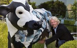 Cậu bé bị hiệu trưởng 'trù ẻo' ngồi tù đến tỷ phú 'nhạc gì cũng nhảy' Richard Branson: Nếu muốn uống sữa, đừng ngồi im giữa cánh đồng và mong những con bò tự tìm đến bạn!