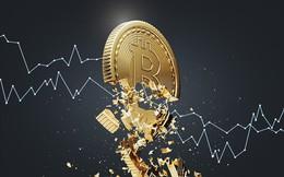 Giá tiền ảo 27.7: Đua nhau bán tháo, Bitcoin rơi chạm đáy 5 tháng