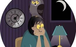 Cú đêm- những con người bị xem là chậm chạp, vô kỷ luật và vô trách nhiệm đừng học theo kiểu mẫu thành công của người khác, hãy lắng nghe điều cơ thể cần