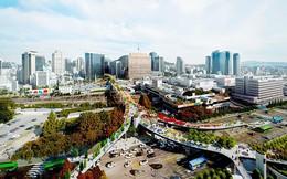 Chuyện lạ ở Hàn Quốc: Dự án biến cầu vượt cũ thành công viên cây xanh đi bộ trên cao