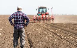 Mỹ: Nông dân kiếm nhiều tiền từ YouTube hơn từ vụ mùa của họ