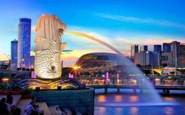 Vì sao người Việt không chọn quê hương, lại thích startup ở Singapore? Thủ tục vận hành siêu đơn giản, có thể tự làm online, cả năm chưa phải làm báo cáo tài chính...