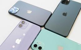 """iPhone 11 màu nào được """"săn lùng"""" nhiều nhất?"""