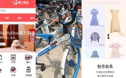 Mô hình chia sẻ phát triển, người Trung Quốc không phải lo mặc gì mỗi ngày, mở app là thuê được quần áo, cắm hoa, mua đồ ăn cho pet đều có dịch vụ hàng tháng