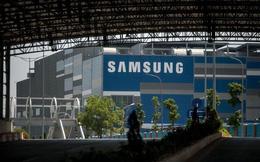 Reuters: Samsung phủ nhận tin đồn xây nhà máy mới ở Hoà Bình
