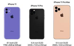 Chưa ra mắt, iPhone 11 đã được dân buôn Việt nhận đặt cọc với giá dự kiến 2.000 USD