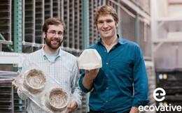 Nấm cho tất cả: Hai chàng trai biến nấm thành thịt, gỗ, bao bì thay thế nhựa và đặc biệt, khách hàng có thể tự làm tại nhà