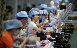 Không đâu bằng nhà: Nhiều DN Trung Quốc chuyên gia công cho nước ngoài bỗng dưng nhận ra kinh doanh trong nước còn lời hơn nhờ chiến tranh thương mại