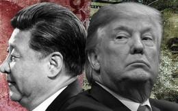 """TQ chơi quân bài """"bầu cử Mỹ"""", liệu TT Trump sẽ đánh đòn """"cận hủy diệt"""" trong thương chiến?"""