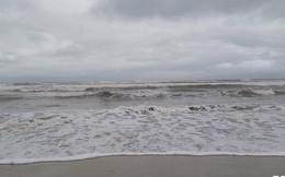 Ảnh: Mang sắt thép quây chằng chịt cả trăm cây dừa ven bãi biển hấp dẫn nhất hành tinh