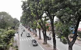 Hà Nội đồng loạt xén vỉa hè, mở rộng đường