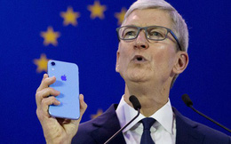 Để trấn an mọi người, ông Tim Cook cho biết, lượng iPhone kích hoạt trong Ngày Giáng Sinh cao kỷ lục